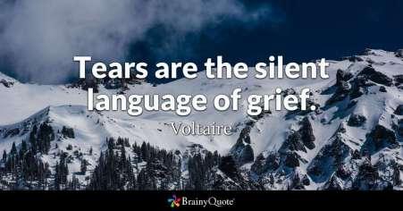 voltaire1-silent